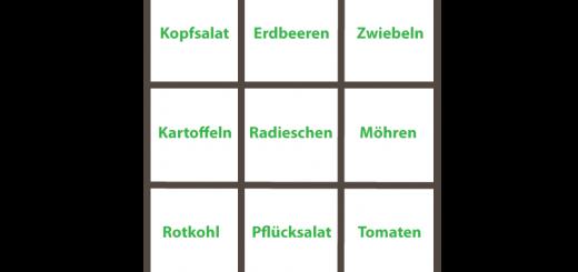 Quadratgarten Beispiel