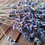Mit Lavendel würzen