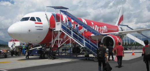 Flugzeugreisen mit dem Haustier