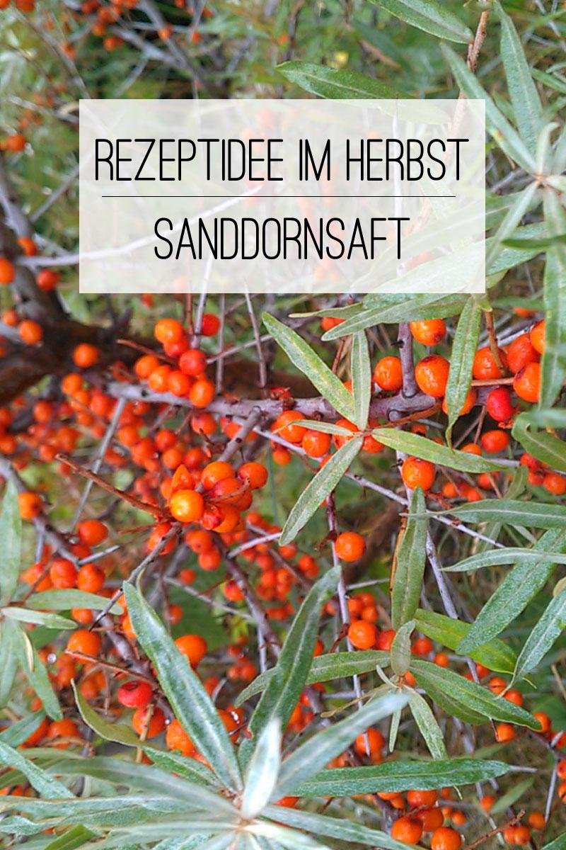 Rezept Sanddornsaft