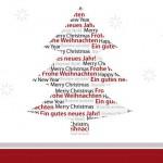 Wie lange wächst ein Weihnachtsbaum?