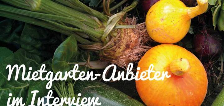 Mietgarten-Anbieter