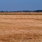 Sortenvielfalt schützen