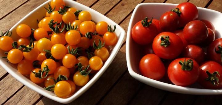 rote und gelbe Tomaten