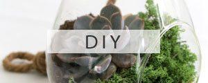 Gartenblog Grüneliebe Kategorie DIY