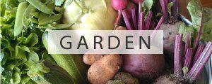 Gartenblog Grüneliebe Kategorie Garten