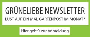 Grüneliebe Newsletter