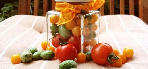Snackgemüse Geschenkidee