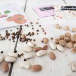 Wie lange ist Saatgut haltbar? | Die Keimfähigkeit von Gemüsesamen