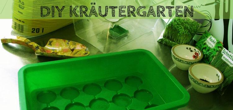 DIY Kräutergarten anlegen im Zimmergewächshaus