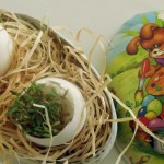 Tipps rund ums (Oster)Ei