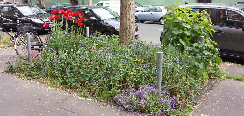 Urban Gardening - Tag des guten Lebens