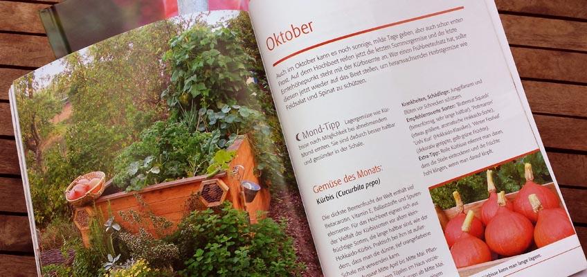 Hochbeet-Gärtnern Monat Oktober