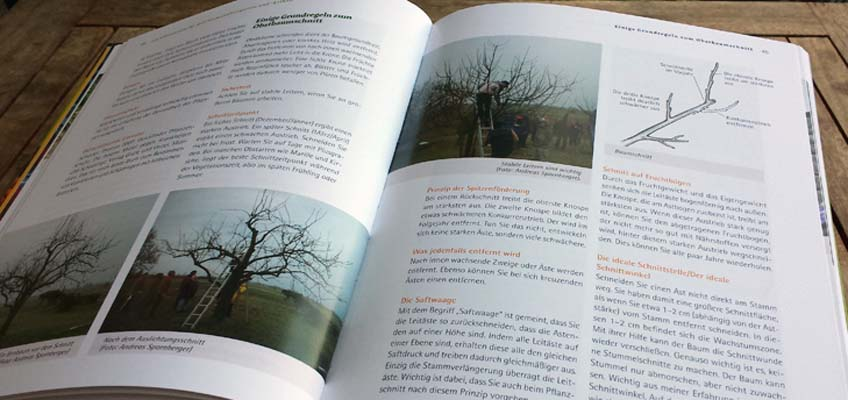 Obstsorten für den Permakulturgarten - Baumschnitt