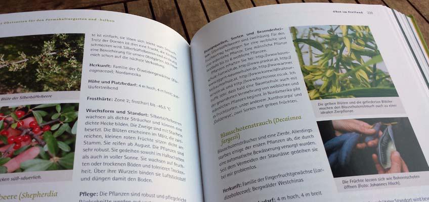 Obstsorten für den Permakulturgarten - Sorten