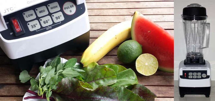 OmniBlend V im Test - Smoothie-Mixer