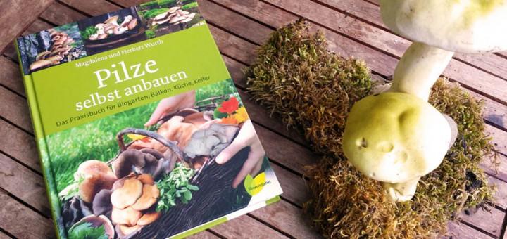 Buchvorstellung Pilze selbst anbauen