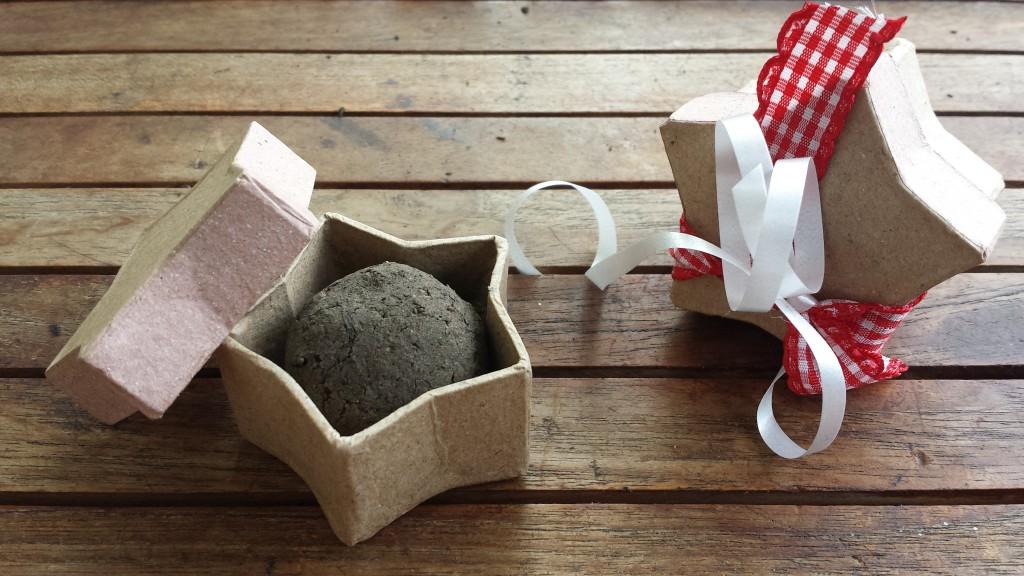 DIY Geschenkidee Seedballs selber machen