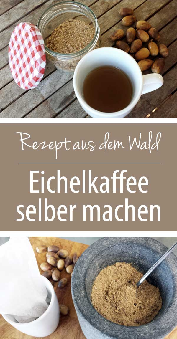 Rezept aus dem Wald - Eichelkaffee - Kaffee aus Eicheln selber machen