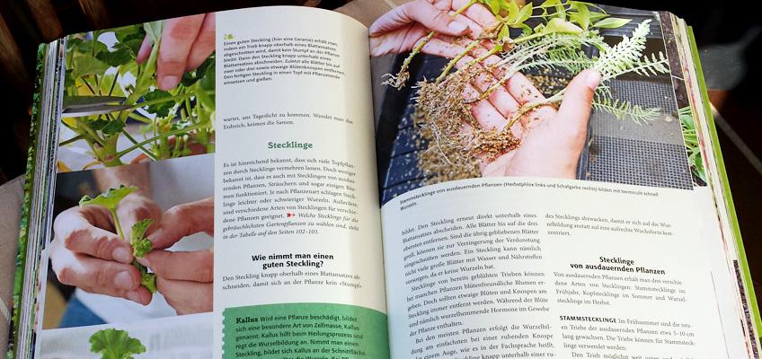 Handbuch Biogärtnern BLV