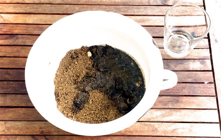 Wasser dazugeben und Teig kneten - Seedballs selber machen