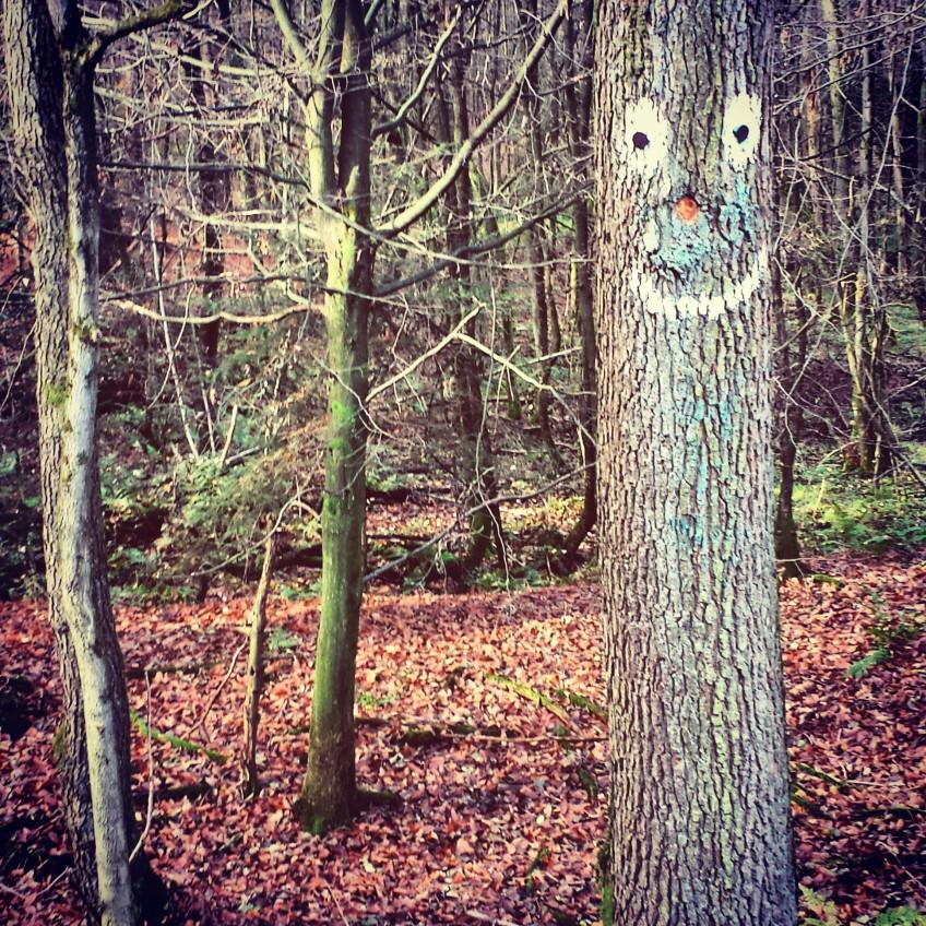 Können Bäume lächeln?