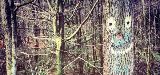 Hausbaum - Können Bäume lächeln