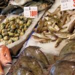 Frischer Fisch Tipps