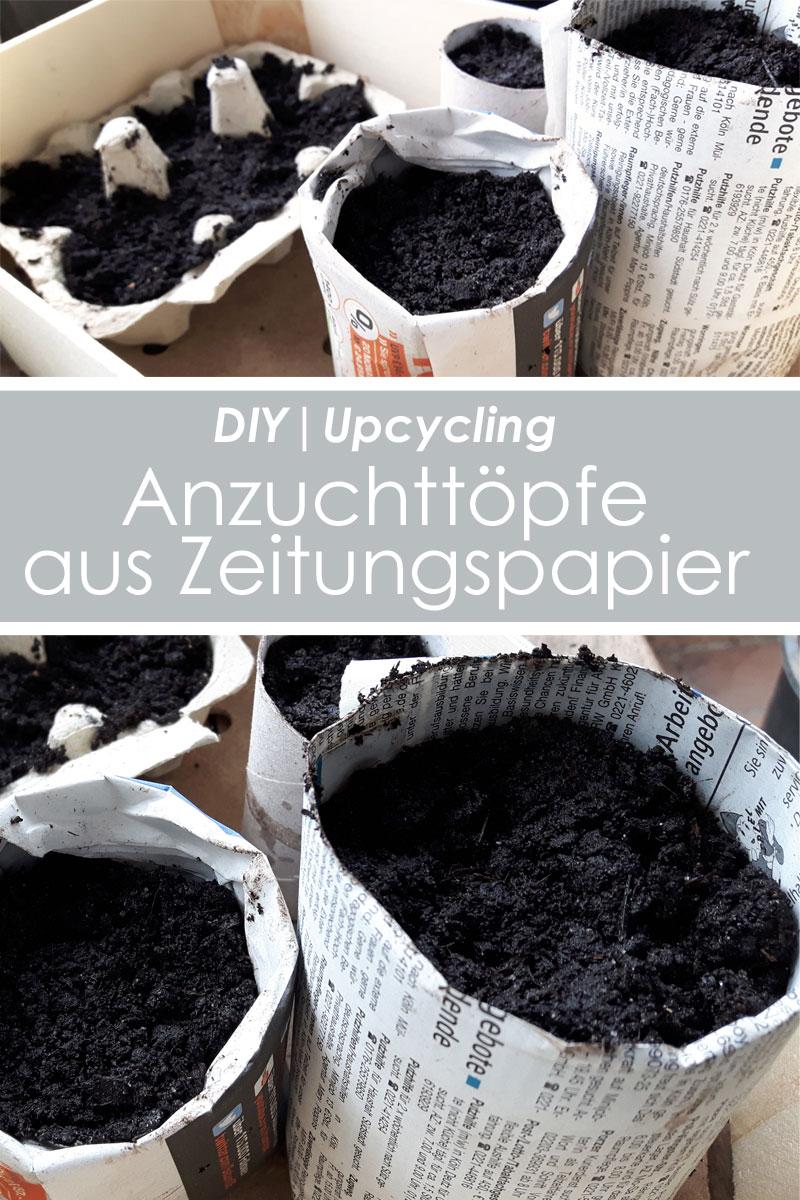 Anzuchttöpfe aus Zeitungspapier DIY Upcycling