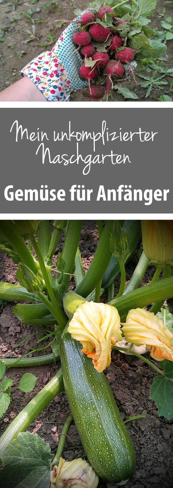 Gemüse für Anfänger - Mein ukomplizierter Naschgarten