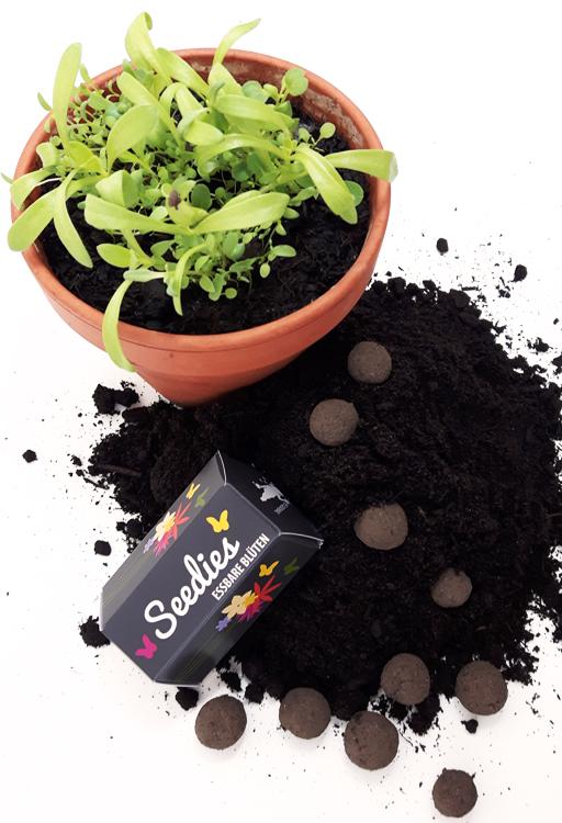 Mini-Seedballs Seedies Essbare Blüten von MISS GREENBALL