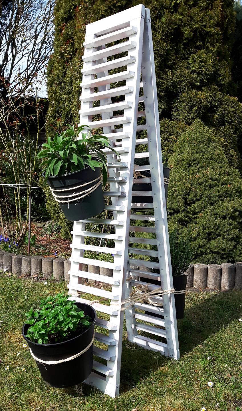 Pflanztopf DIY Kräutergarten Projekt Upcycling