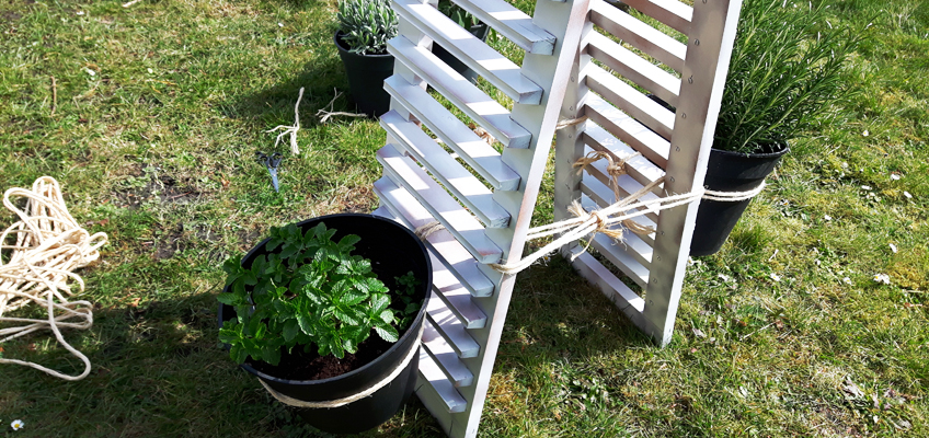 DIY Kräutergarten Upcycling