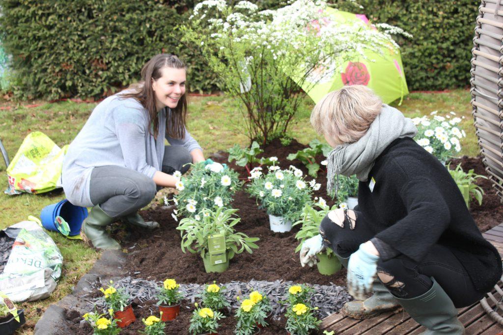 Gartengestaltung Garden Queen Pflanzen Kölle