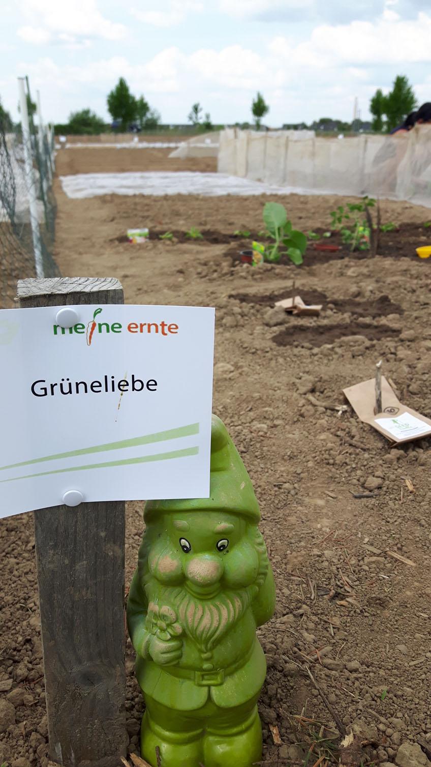 Grüneliebe Gartenzwerg