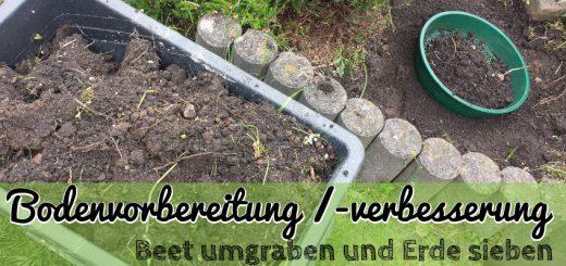 Bodenvorbereitung - Erde sieben