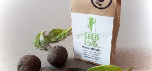 Seedballs Vitaminbombe mitz Herbstsorten Asia-Salat Rukola Kresse Sauerampfer