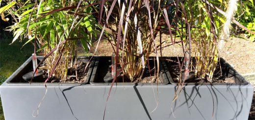 Pflanzkübel aus Fiberglas im Test