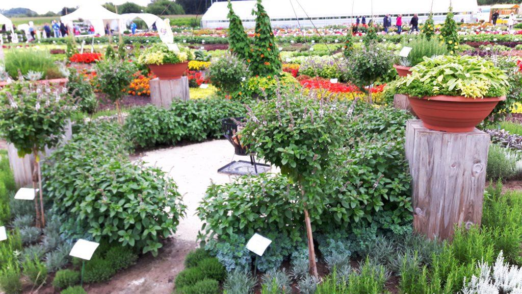 Garten-Blogger-Treffen Kaldenhof