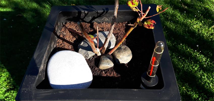 Pflanzgefäß mit Bewässerungssystem