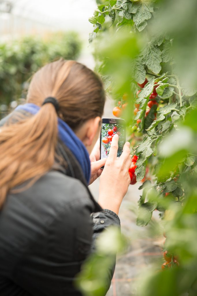 Volmary® Gartenblogger-Treffen 2016-200