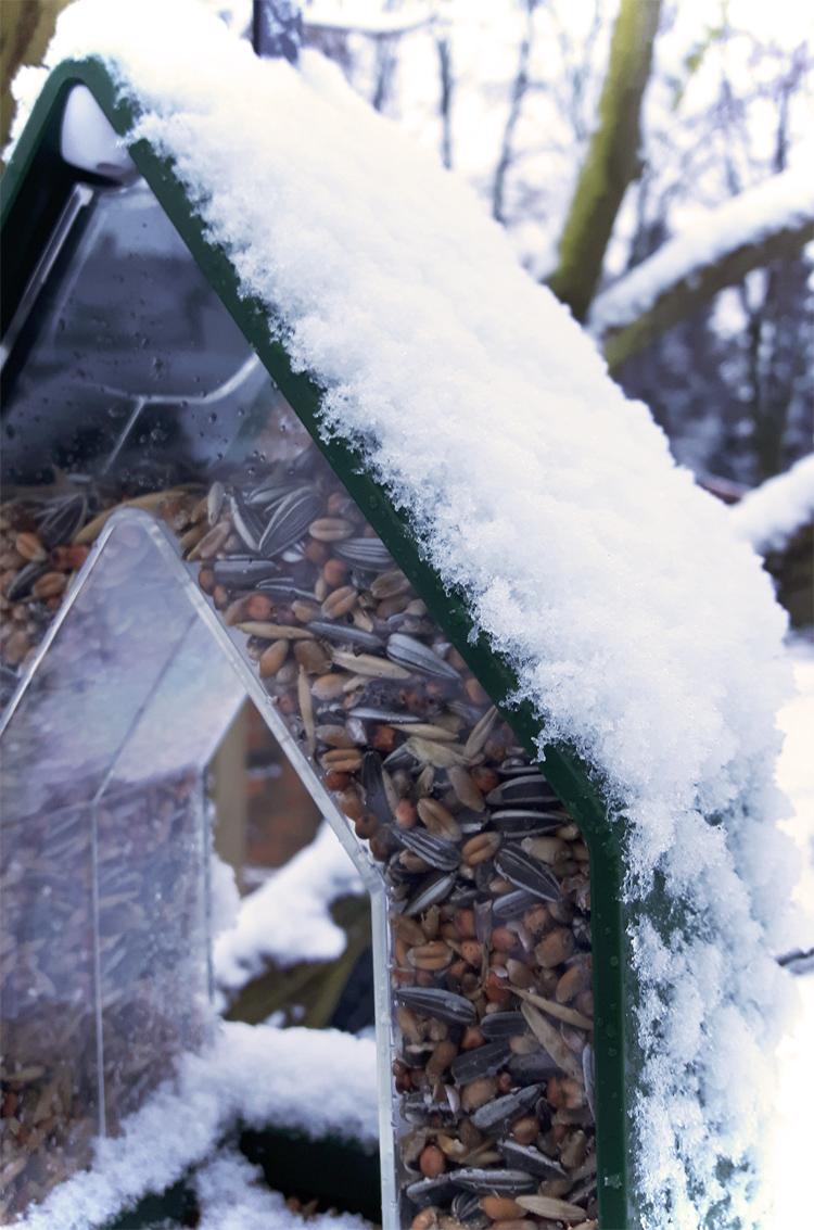 Vogelhaus im Garten Schnee