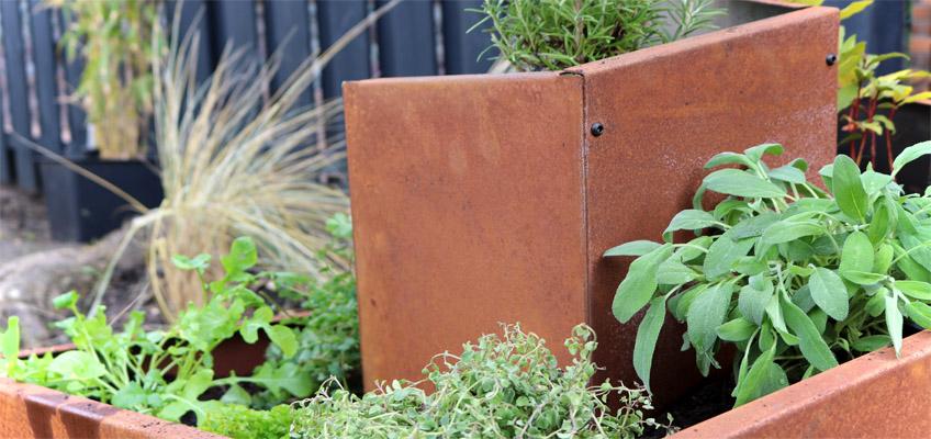 Kräuterschnecke bepflanzen Edelrost