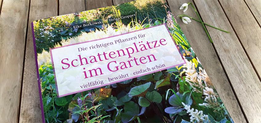 Schattenplätze im Garten