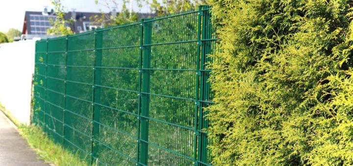 Zaun oder Hecke - Privatsphäre im Garten