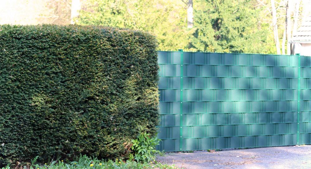 Zaun oder Hecke