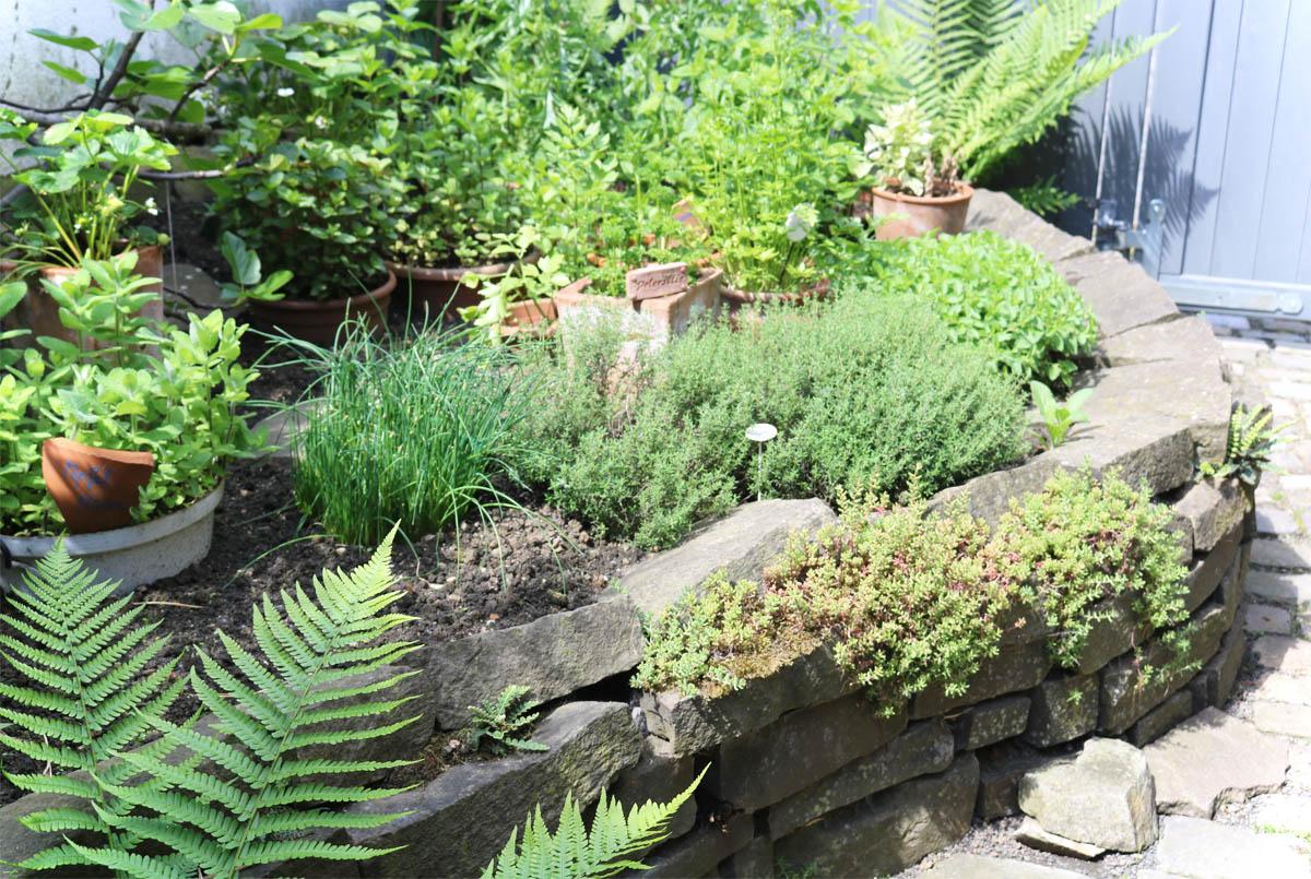 Offene Gartenpforte Naturnaher Garten Kräuterhochbeet Trockenmauer