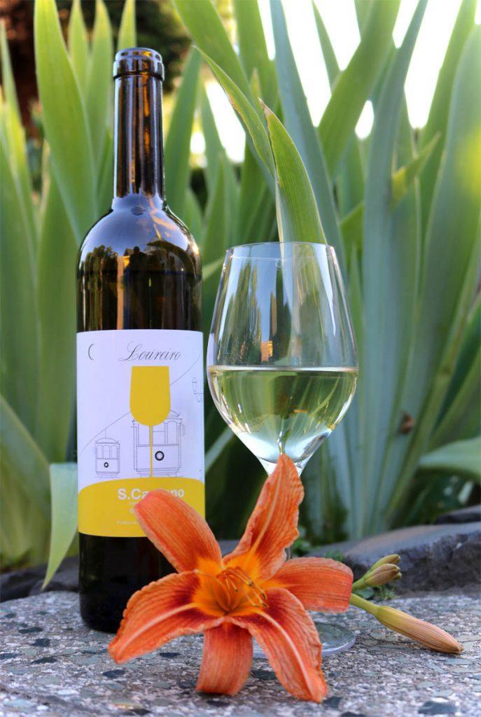 Vinho Verde Portugiesischer Weißwein 02