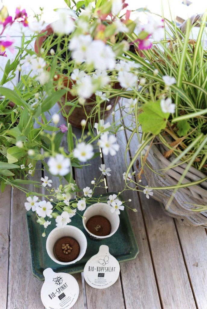 real meinkleinergarten sommerzeit ist balkonzeit
