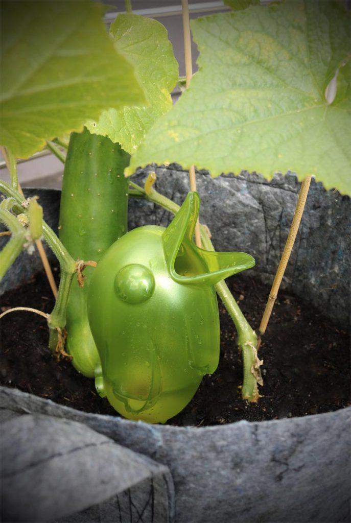 Bewässerung Balkonpflanzen Bördy XL